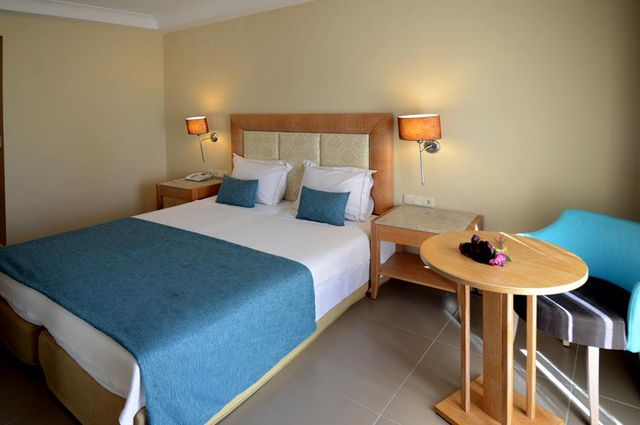 Danai Hotel and Spa - Single room
